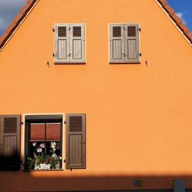 Fensterladen Basel-SE in Dekor Rost Dunkel 2020